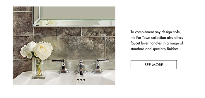 To complement any design style, the For Town collection also offers faucet lever handles in a range of standard and specialty finishes. [ SEE MORE ]